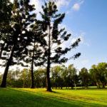 golf-max-environment