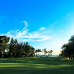 golf-max-environment-4