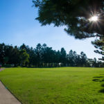 golf-max-environment-5