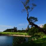 golf-max-environment-7