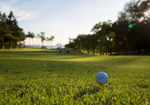 Golf course scenery