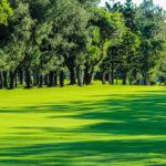 golf-max-environment-3