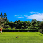 golf-max-environment-9