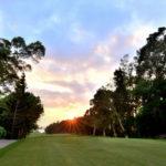 golf-max-environment-6
